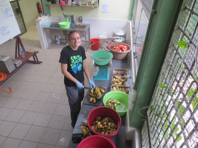 Jenny preparing fruit for the sun bears (Photo credit ©Jenny Cantlay