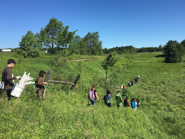 Frontline members walking into site to plant native plants along the stream to prevent erosion at Upper Credit Conservation Area (Photo credit ©Credit Valley Conservation)