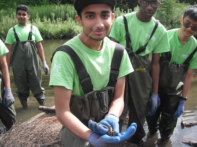 CYC volunteers from Turner Fenton Secondary School found a freshwater crayfish while restoring the stream at Upper Credit Conservation Area (Photo credit ©Credit Valley Conservation)