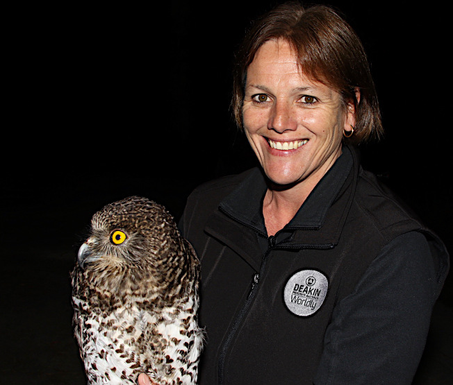 Raylene with a male Powerful Owl ready for release.