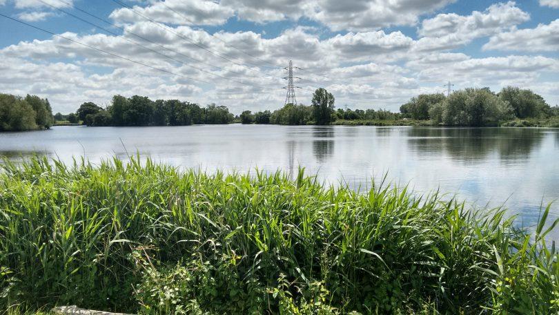 Walthamstow Wetlands ©Rachel Smith
