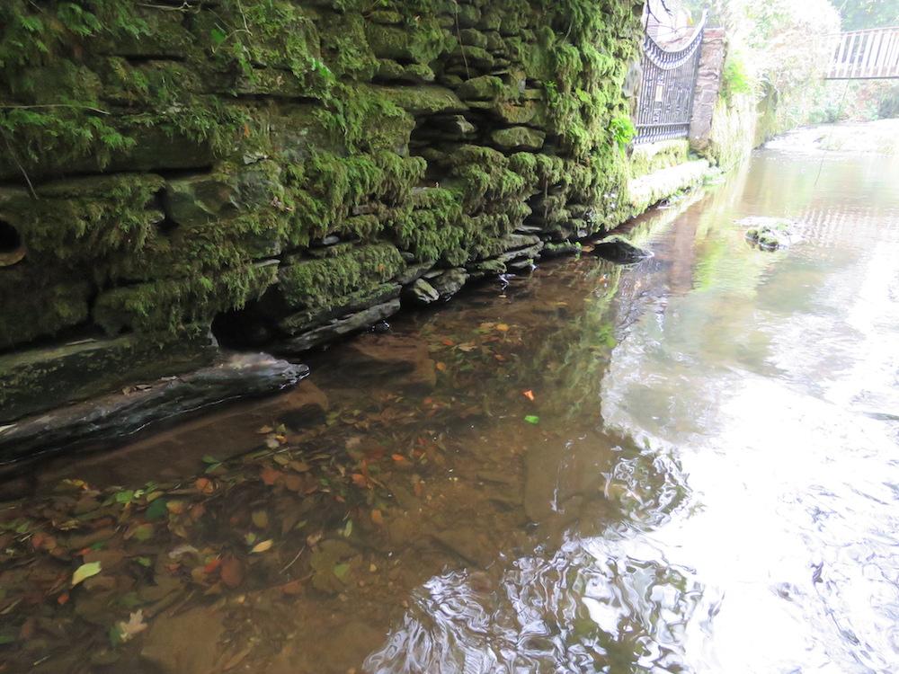A man-made wall providing refuges for eels (Photo credit ©Peter Walker)