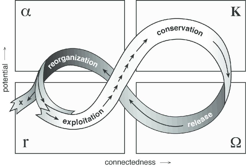 Fig-3-The-adaptive-cycle-from-Panarchy-edited-by-Lance-H-Gunderson-and-CS-Holling