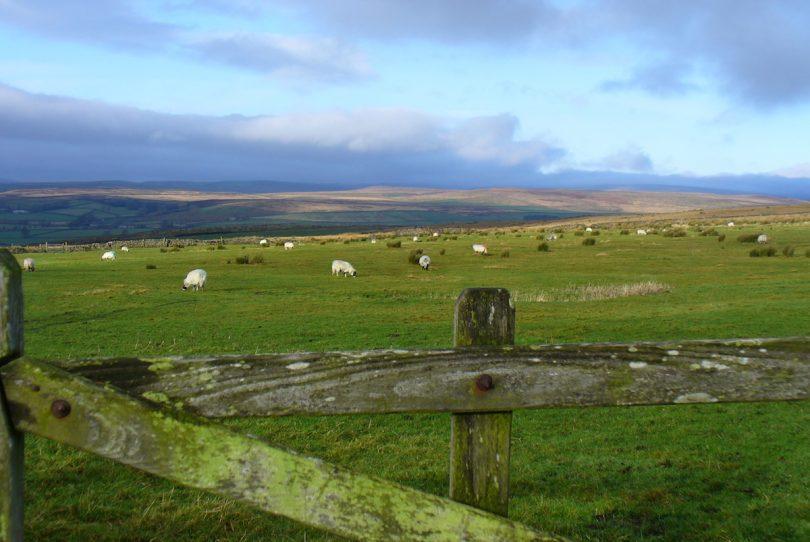 careers ecology biodiversity