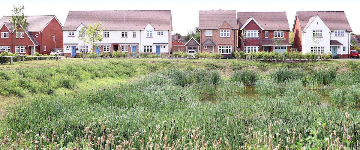 biodiversity net gain redrow atkins mitigation housing development