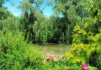 botanical gardens anthropocene