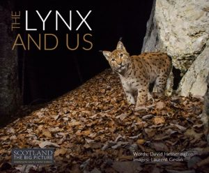 the lynx and us