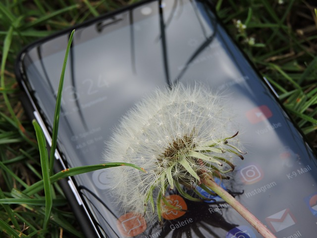 smart phone nature connectedness