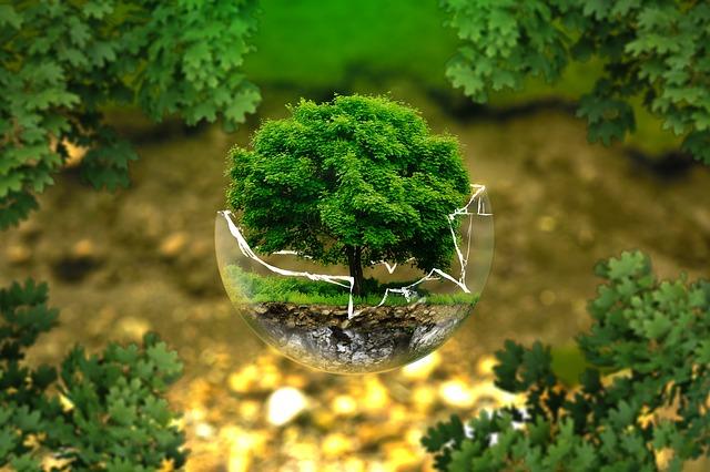 environmental protection 25 year plan