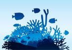 3D printing coral reefs