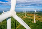 wind turbines ecology conservation apex predators